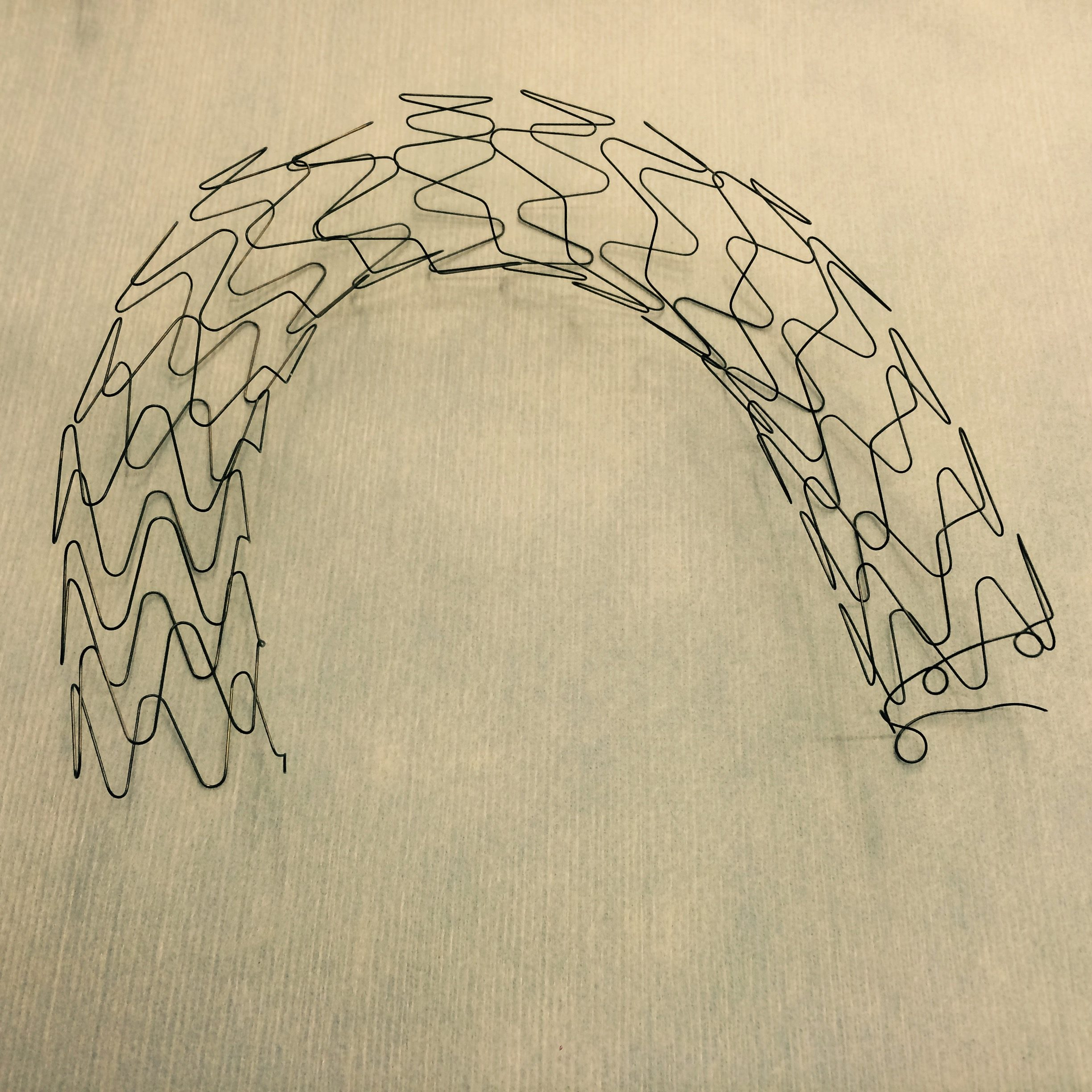 Nitinol wire formed stent